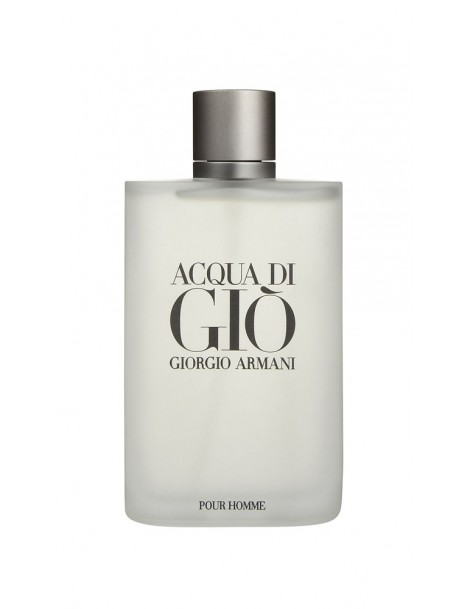 Acqua di Giò Homme Eau de Toilette Giorgio Armani
